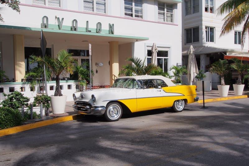 在海洋驱动的被恢复的古色古香的Oldsmobile敞篷车在迈阿密海滩 免版税库存图片