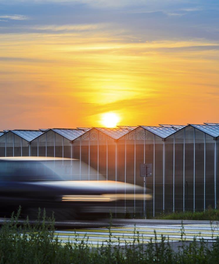 在温室植物附近的高速公路日落的 图库摄影