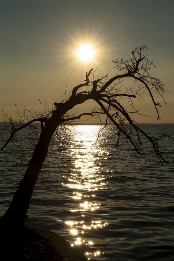 在湖Garda,意大利的日落 免版税库存图片