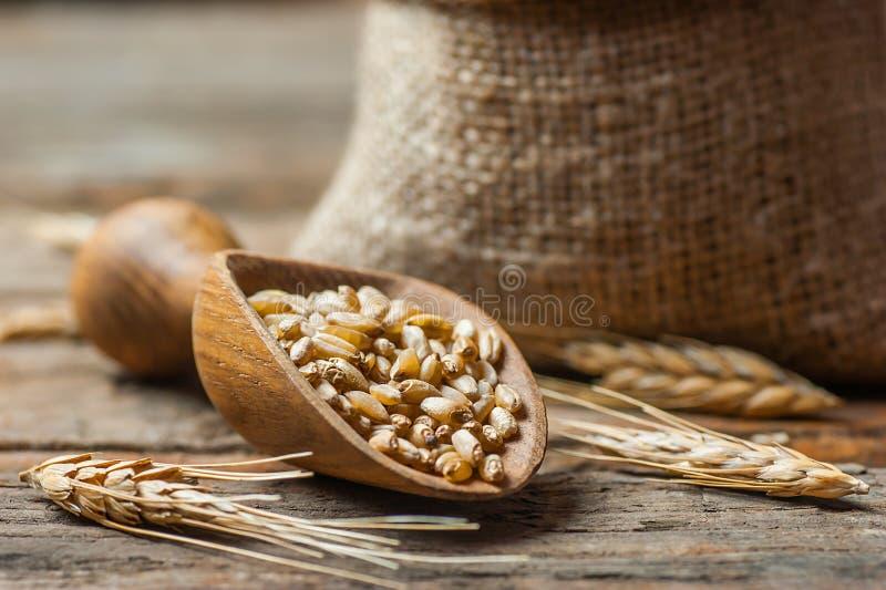 在木瓢或铁锹的麦子五谷 库存照片