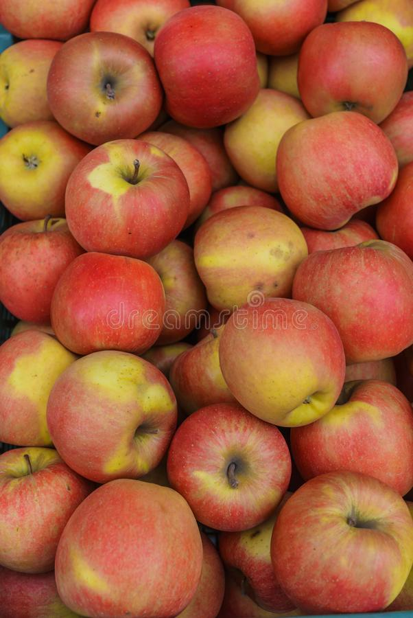 在抽屉的红色苹果 侧视图 秋天季节时间 免版税库存照片
