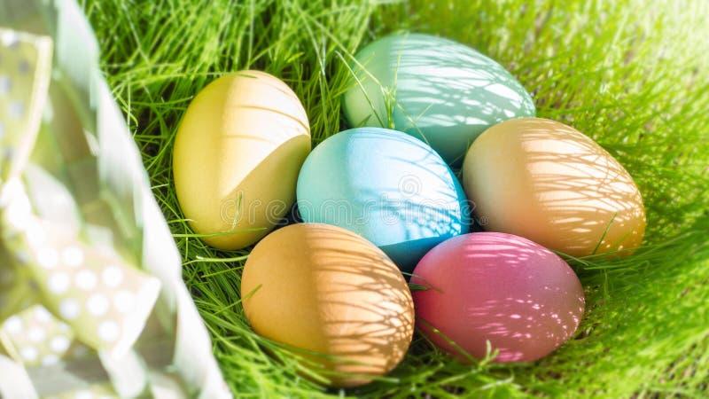 在春天绿草的复活节五颜六色的鸡蛋在阳光花卉抽象背景中 库存照片