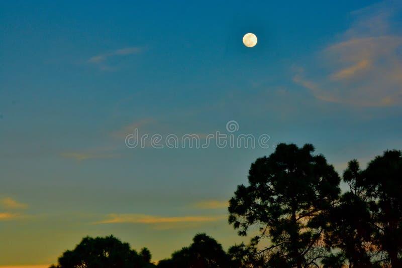 在日落之前的月亮 免版税库存图片