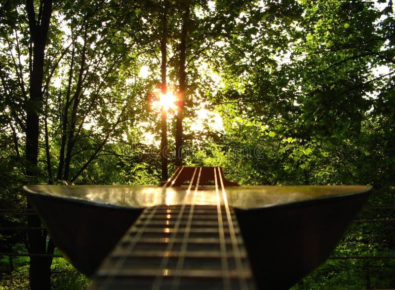在日落光芒的串乐器  免版税库存照片