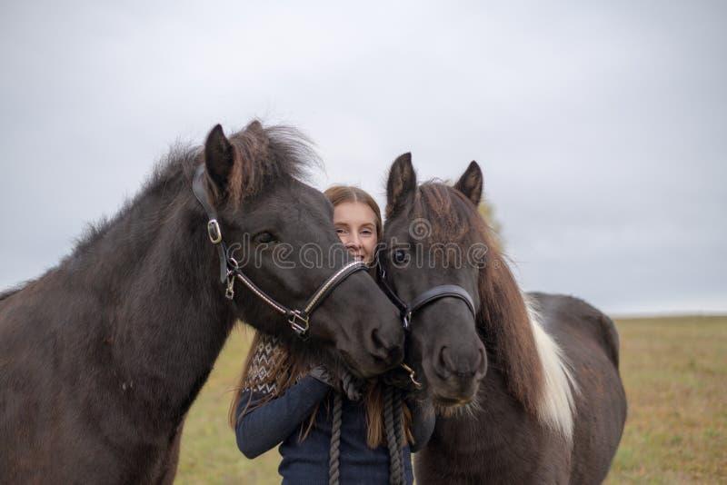 在拥抱她的两匹冰岛马的领域的微笑的年轻女人身分 免版税库存照片