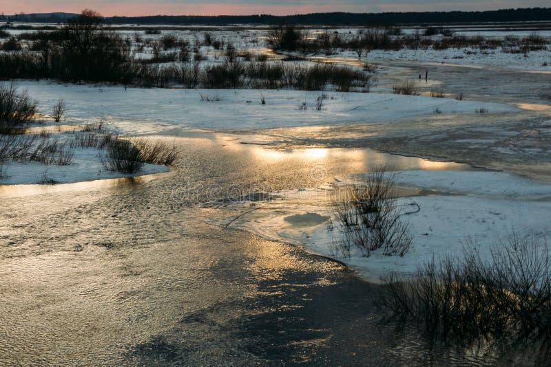 在洪泛区的日落 库存图片