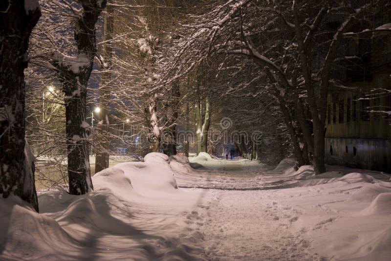 在灯笼下光的一个冬天晚上  免版税图库摄影