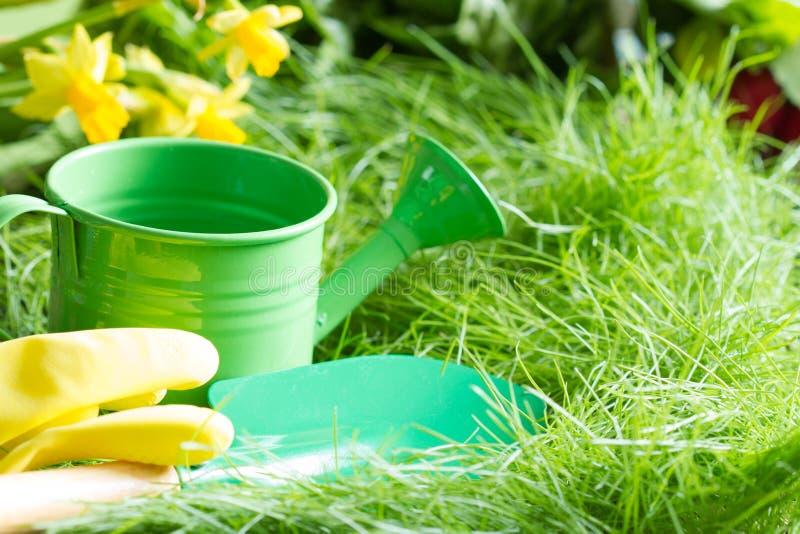 在绿草的工具在春天庭院摘要从事园艺的背景 免版税库存图片