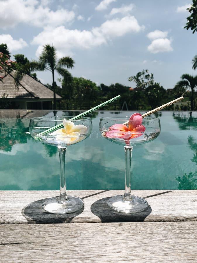在热带别墅的两个酒精鸡尾酒在游泳场附近 库存照片