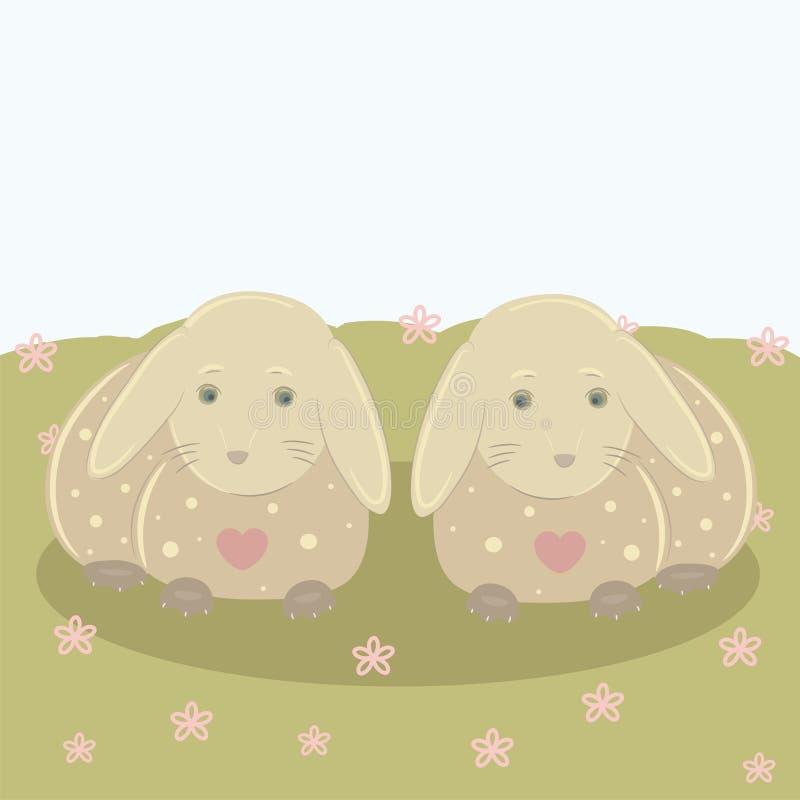 在爱的兔宝宝 向量例证