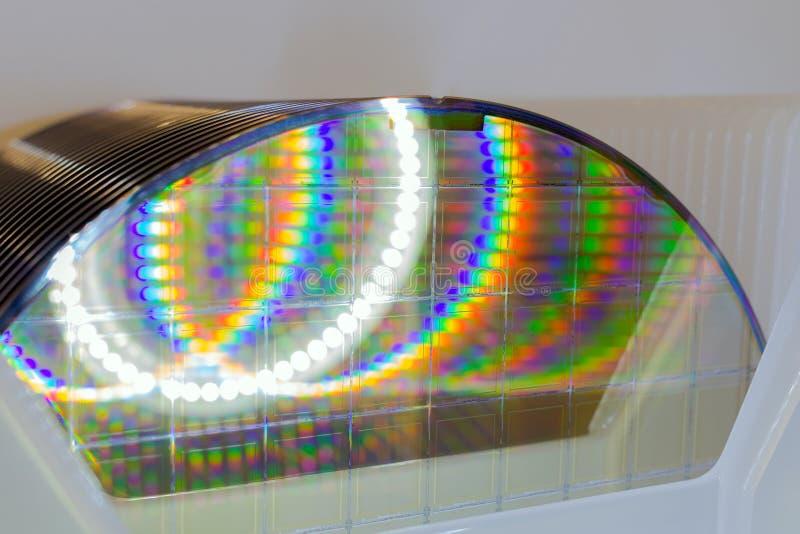 在白色塑料持有人箱子的硅片在桌A薄酥饼是一个薄片半导体材料,例如水晶 库存图片