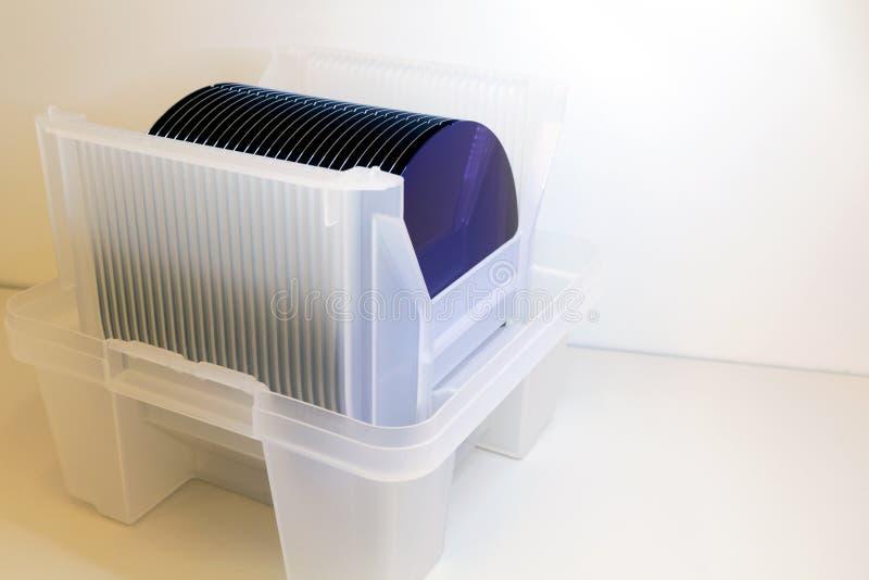 在白色塑料持有人箱子的硅片在桌A薄酥饼是一个薄片半导体材料,例如a 免版税库存照片