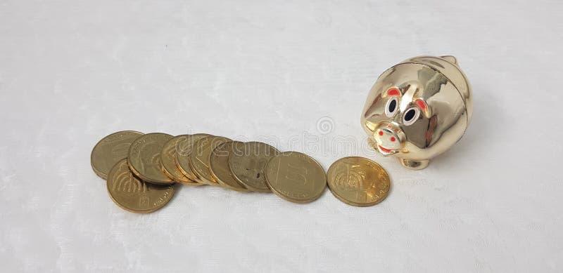在白色桌上的以色列硬币在金黄发光的存钱罐附近 免版税库存照片
