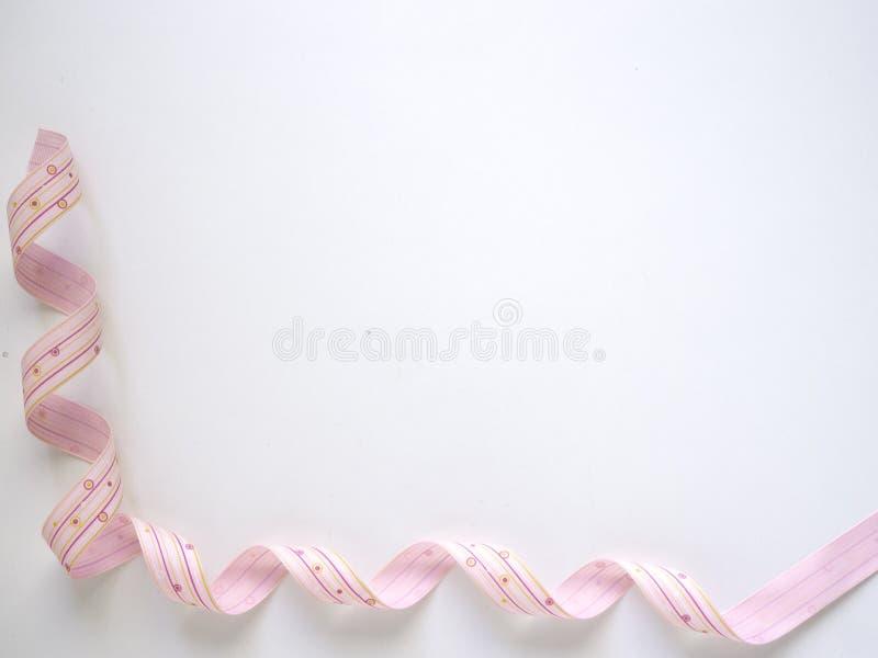 在白色的桃红色卷曲丝带 库存图片