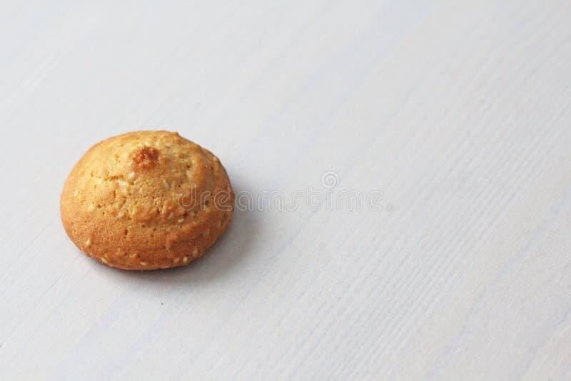 在白色背景的曲奇饼,相似与女性乳头 以曲奇饼的形式乳头 幽默,双重意思 库存照片