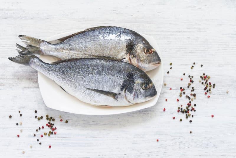 在白色背景的新鲜的皇家Dorada 健康概念的食物 顶视图,拷贝空间 库存图片