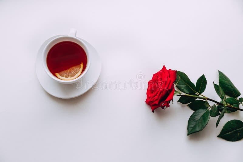 在白色背景的红色玫瑰,茶在3月8日前 库存图片