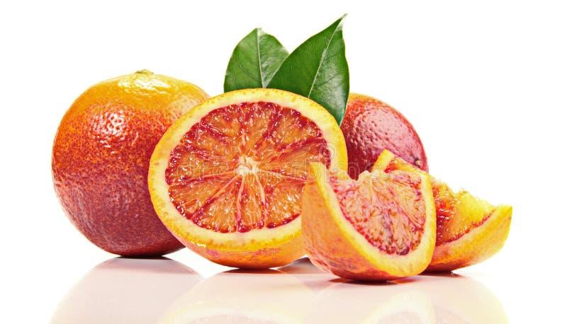 在白色背景的血橙 库存图片