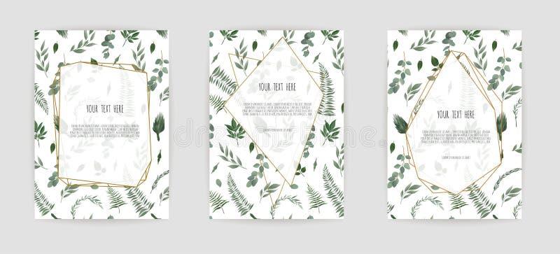 在白色背景的被设置的植物的婚姻的请帖模板设计,白色和桃红色花 向量例证