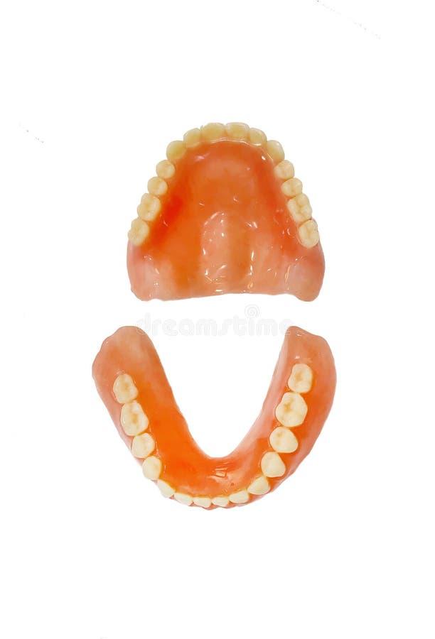在白色背景隔绝的完全充分的假牙 库存图片