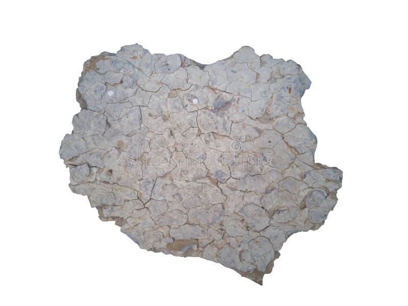 在白色背景隔绝的油母页岩纹理 免版税图库摄影