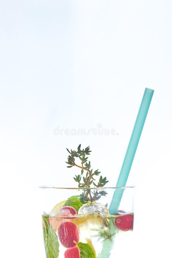 在白色隔绝的吊索的冷的薄荷的莓果鸡尾酒 复制空间 与秸杆的夏天刷新的饮料 自由空间为 免版税库存图片