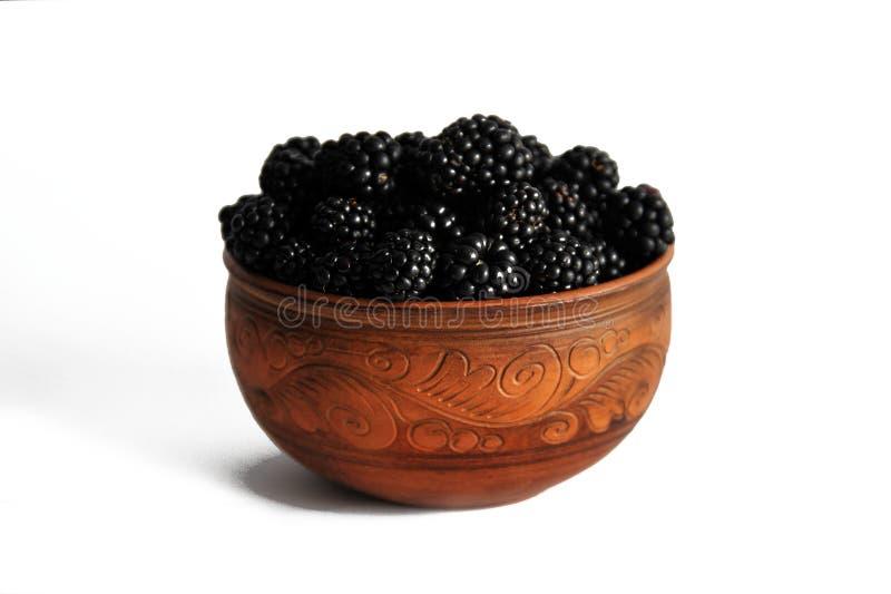 在白色隔绝的瓦器的黑莓莓果 库存图片
