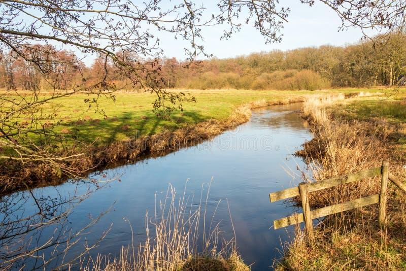在荷兰省德伦特省的一条溪 免版税库存图片