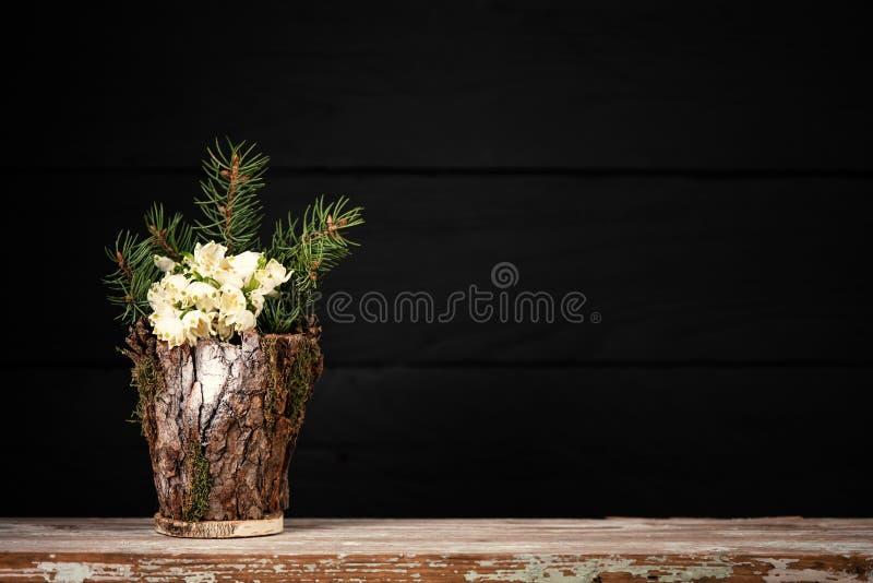 在装饰花瓶的花 Leucojum vernum是第一春天雪花,演播室射击 免版税库存图片