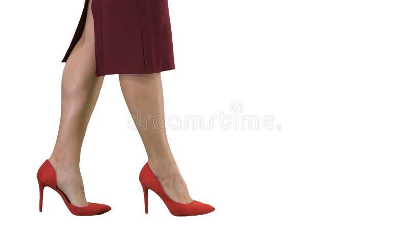 在走白色背景的红色脚跟的性感的妇女腿企业夫人 免版税库存图片
