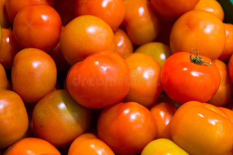 在超级市场柜台的水多的成熟红色蕃茄 特写镜头,宏指令,背景 免版税库存照片