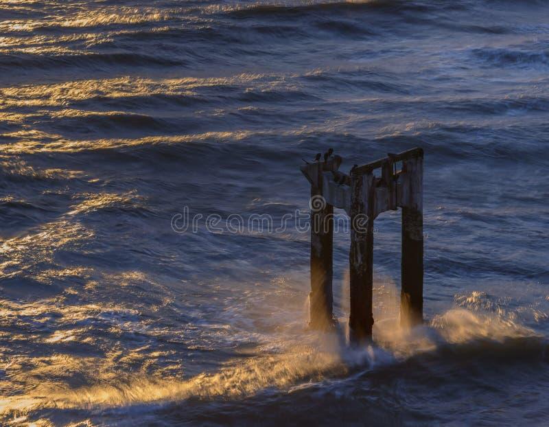 在达文波特,加利福尼亚附近的被放弃的码头柱子,日落的 图库摄影