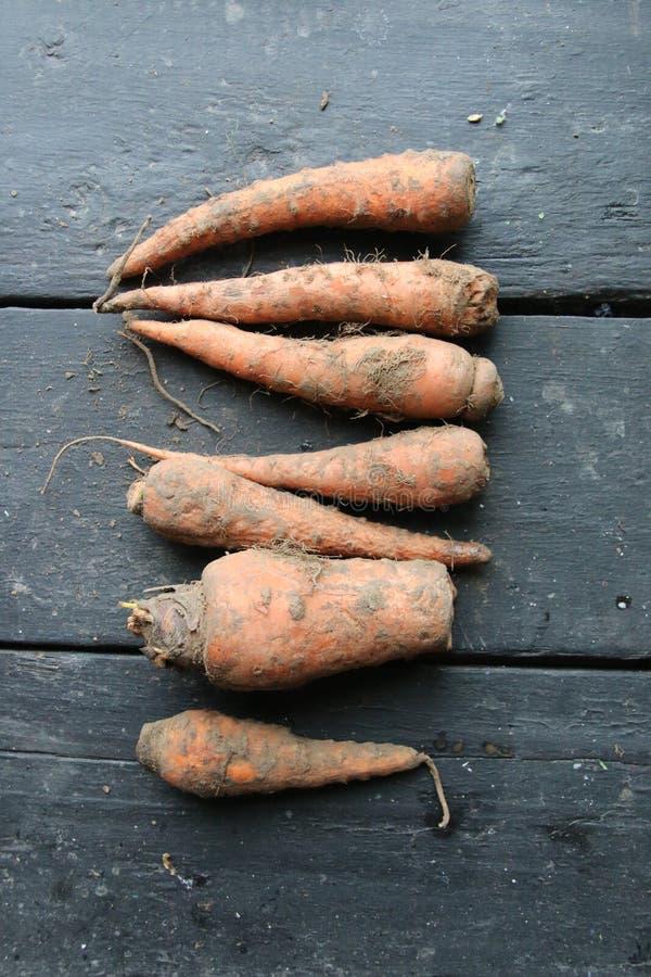 在葡萄酒桌上的红萝卜,健康食品想法 免版税库存照片