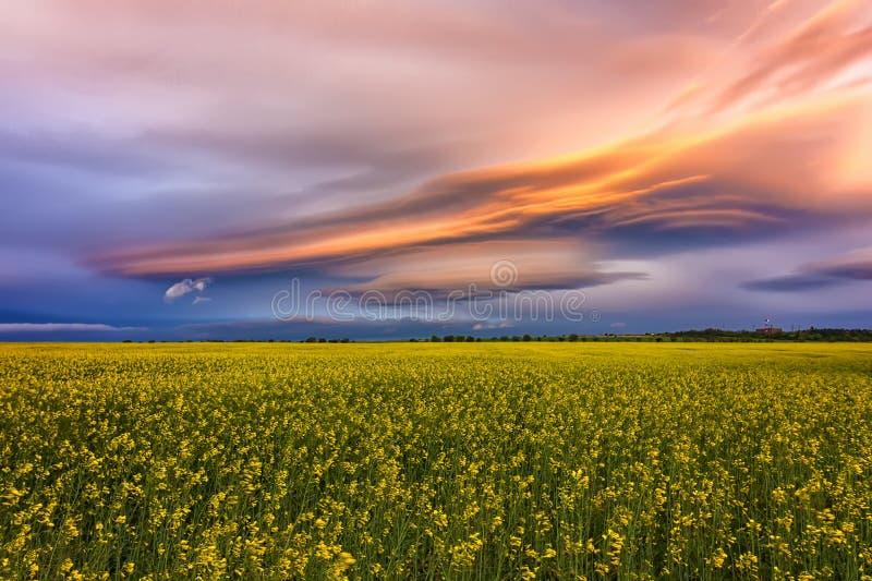 在领域的令人惊讶的五颜六色的云彩 库存照片