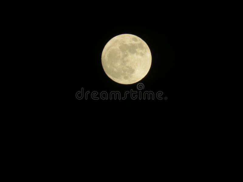 在黑暗的月光 免版税图库摄影