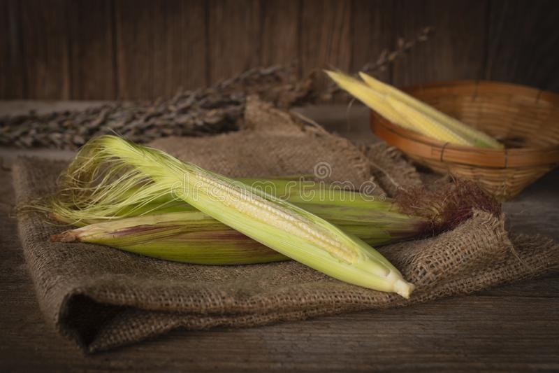 在那里大袋和木桌背景的新鲜的成熟小玉米是在篮子被安置的后部的小玉米 库存图片