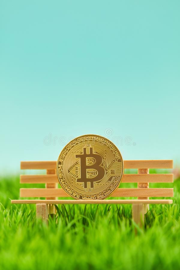 在银行的Bitcoin硬币当投资概念 免版税库存照片