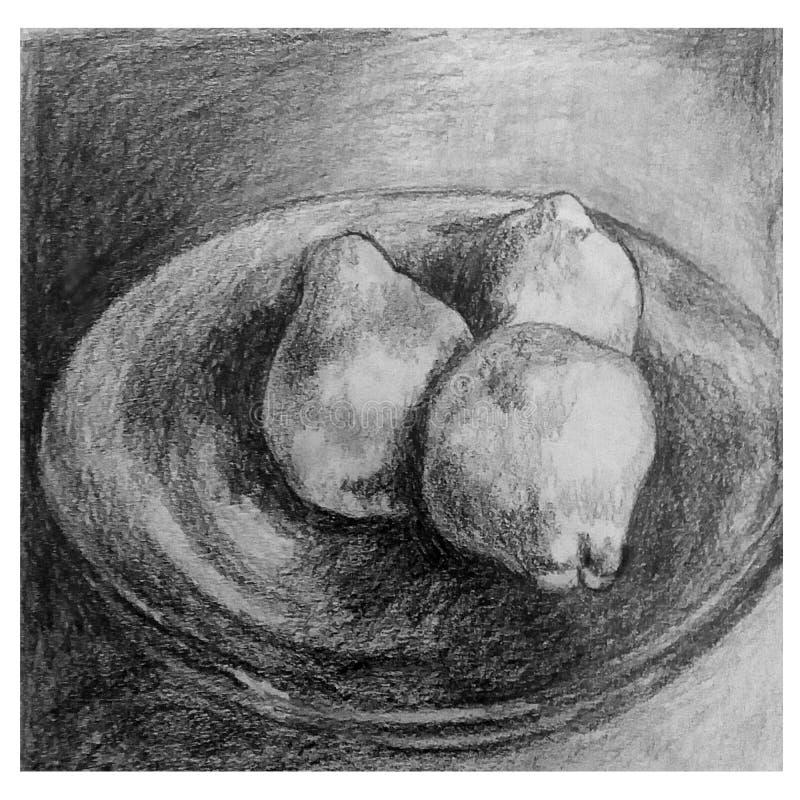 在铅笔执行的艺术性的静物画图画 库存照片