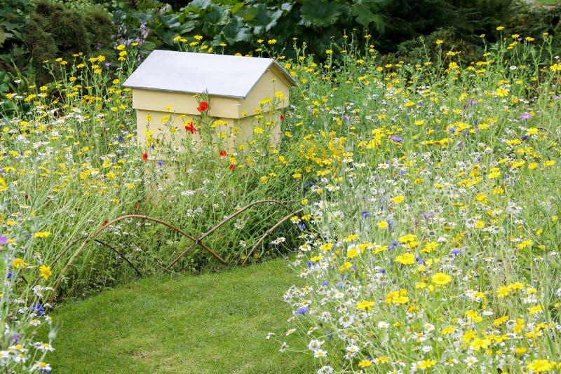 在野花庭院里设置的蜂蜂房 免版税库存图片