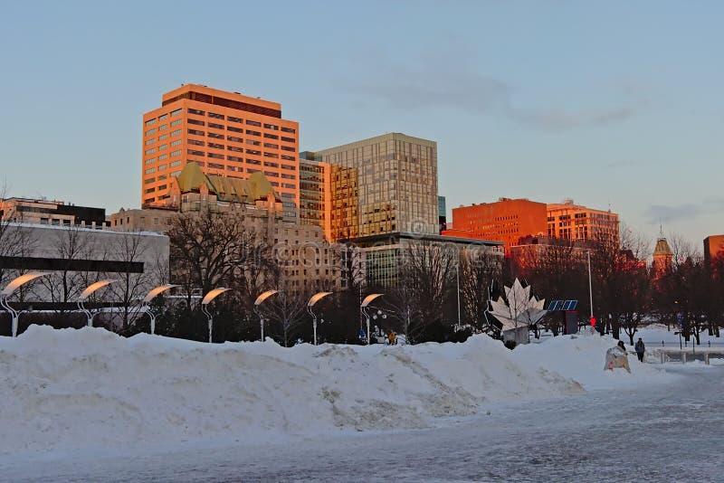 在雪盖的联邦公园在一个冬天早晨在渥太华 免版税图库摄影