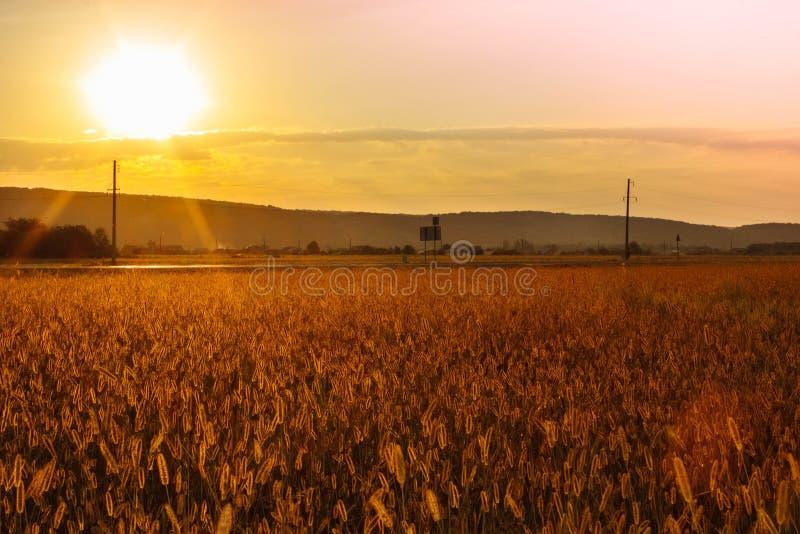 在途中的日落向小镇 库存图片