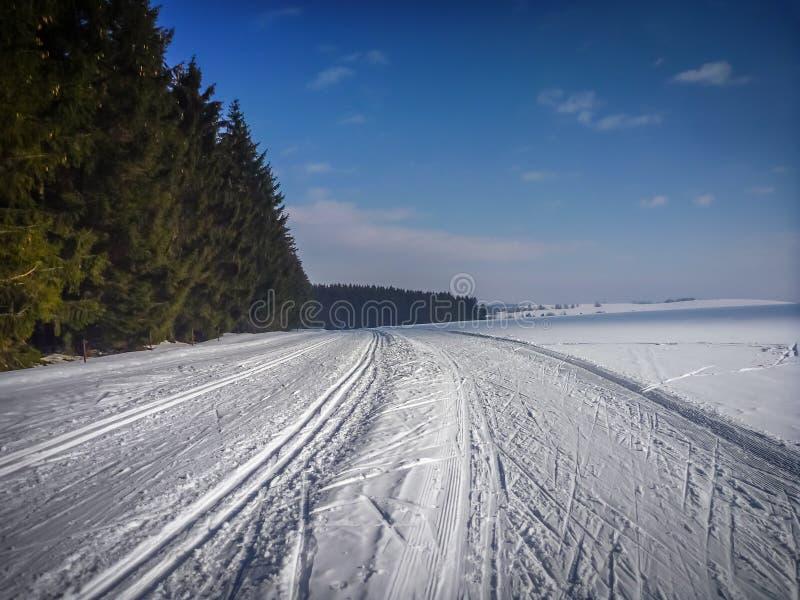在Frysavsky ledovec的北欧滑雪的足迹在Frysava附近 图库摄影