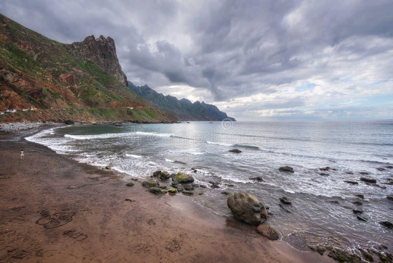 在Taganana海滩,北部特内里费岛海岛,加那利群岛,西班牙的剧烈的海岸线风景 免版税库存照片