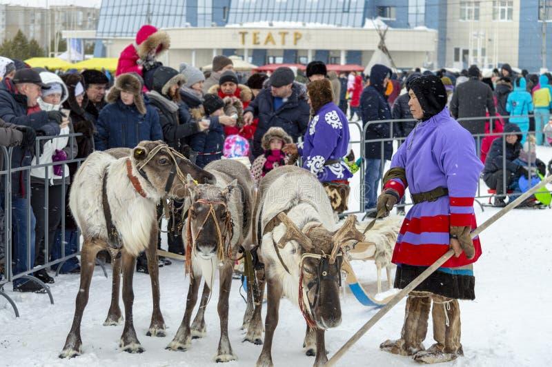 """地方土人- Khanty,三头鹿,雪橇,冬天驯鹿雪橇的乘驾孩子,""""Seeing winter†节日 免版税图库摄影"""