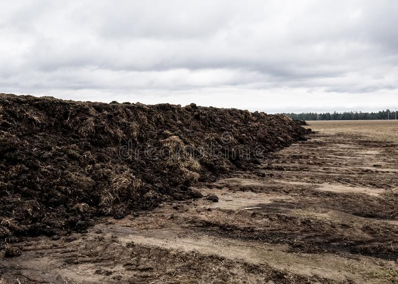 土壤为种植做准备 有机肥料和土壤纹理背景 顶视图 免版税库存照片