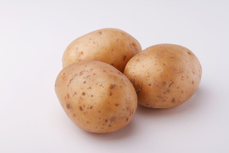 土豆三 免版税库存图片