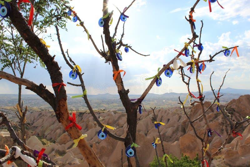 土耳其卡帕多细亚山树 库存图片