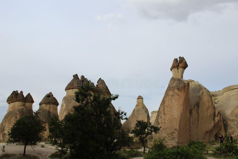 土耳其卡帕多细亚山树 免版税图库摄影