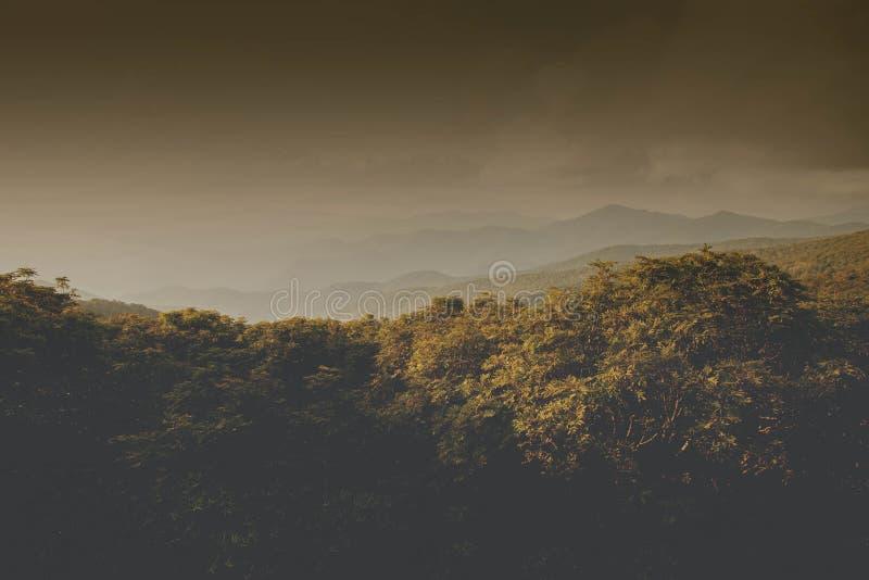 土质阿什维尔北卡罗来纳山风景 免版税库存图片