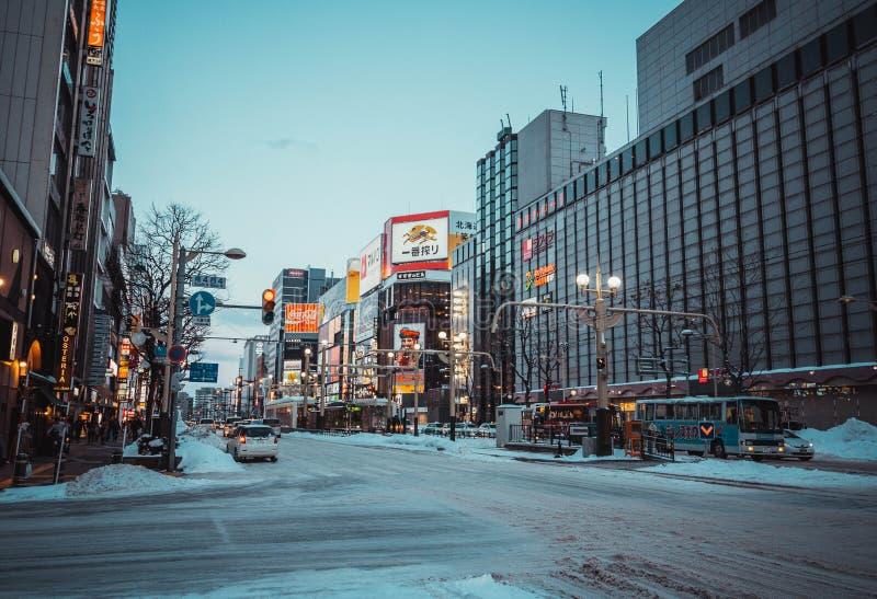 """åŒ-æµ·¼ ŒWinter Hokkaidoï do  do é de """" fotografia de stock royalty free"""